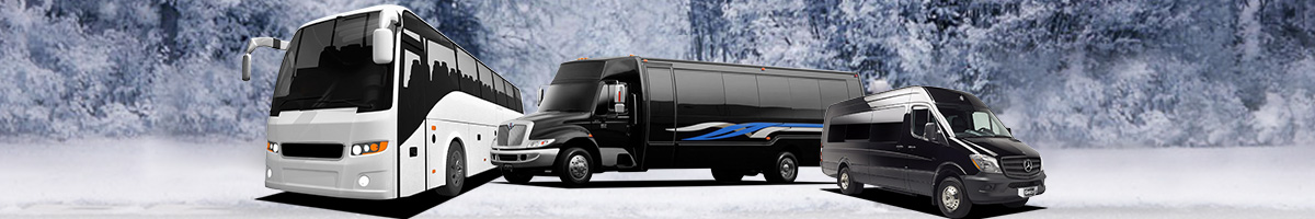 Dc limousine in black